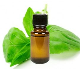 Organic Basil Essential Oil has an herbaceous, warm and spicy aroma & is helpful in dealing with feelings of anxiousness, fear, or nervousness.