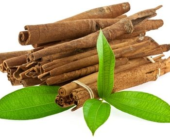 Organic cinnamon leaf essential oil has a characteristic warm, musky, spicy, cinnamon aroma. It has many health benefits. Our oil is steam distilled.